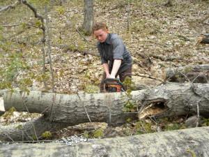 Log Clearing