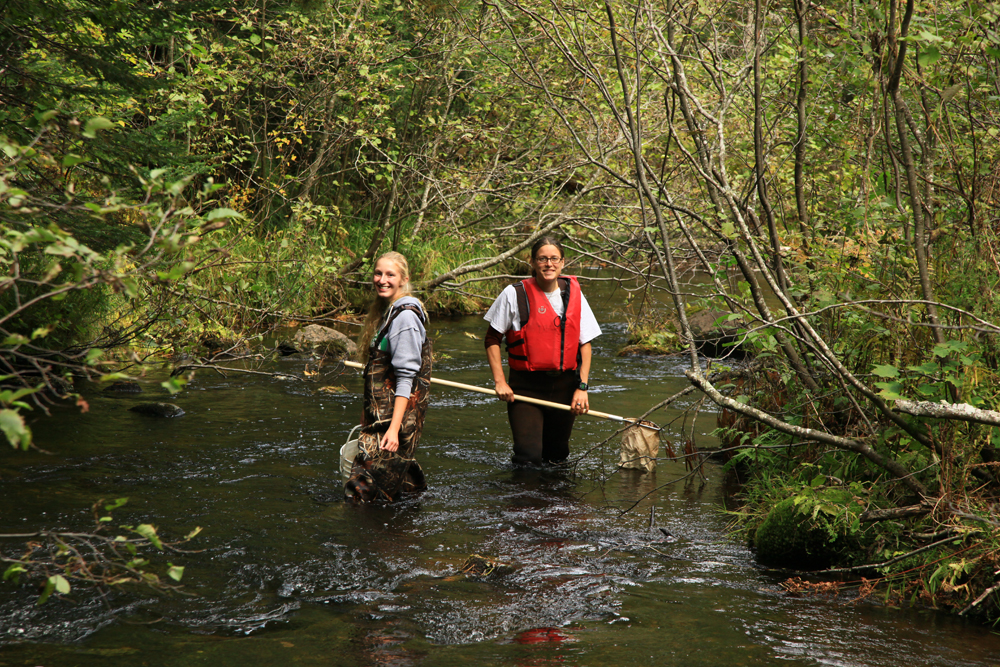 Volunteer Water Monitoring 2012