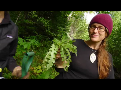 Christy Budnick and the European Swamp Thistle rosette.