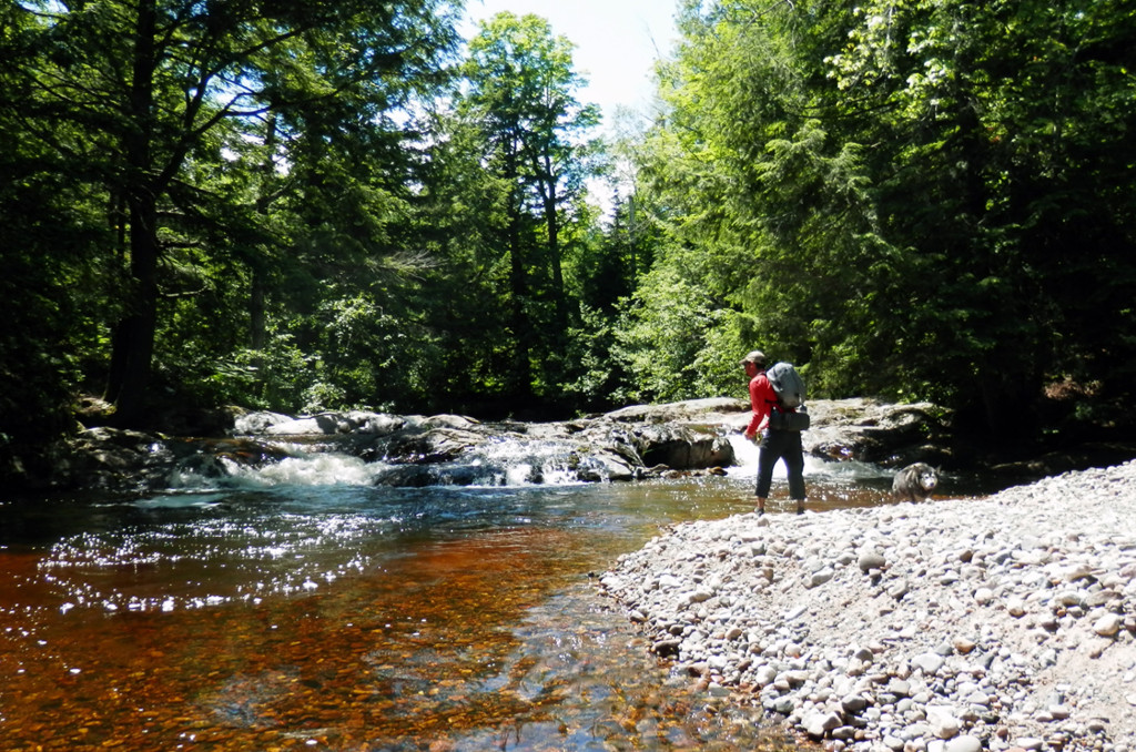 A visitor from Chicago fishes the Yellow Dog River for Brook Trout