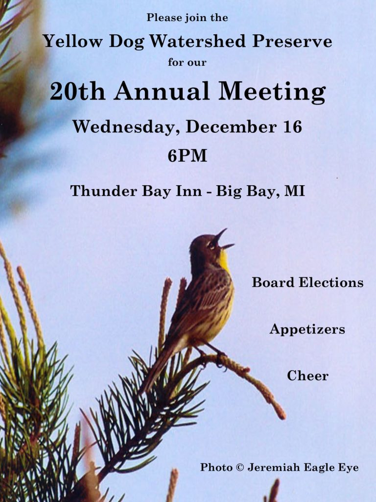 20th Annual Meeting 12_16 2015 Poster