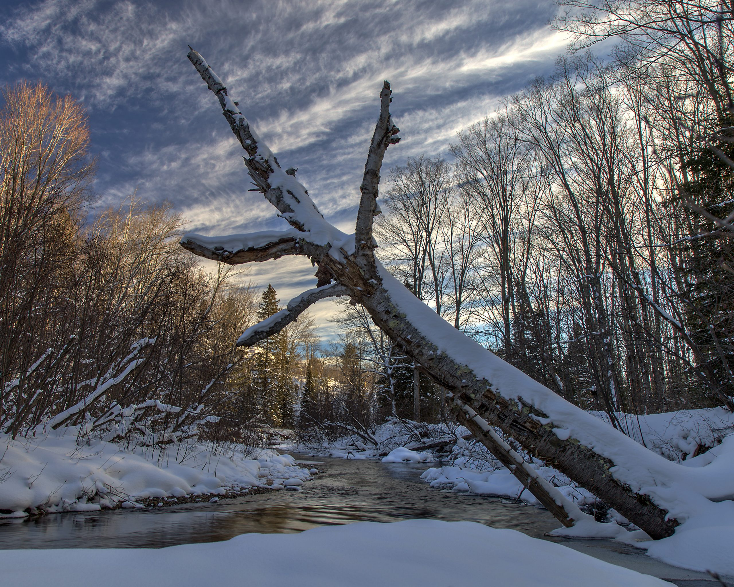 Photo by William Malmsten of the Yellow Dog River Community Forest
